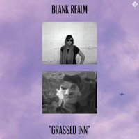 blank-realm-grassed-in